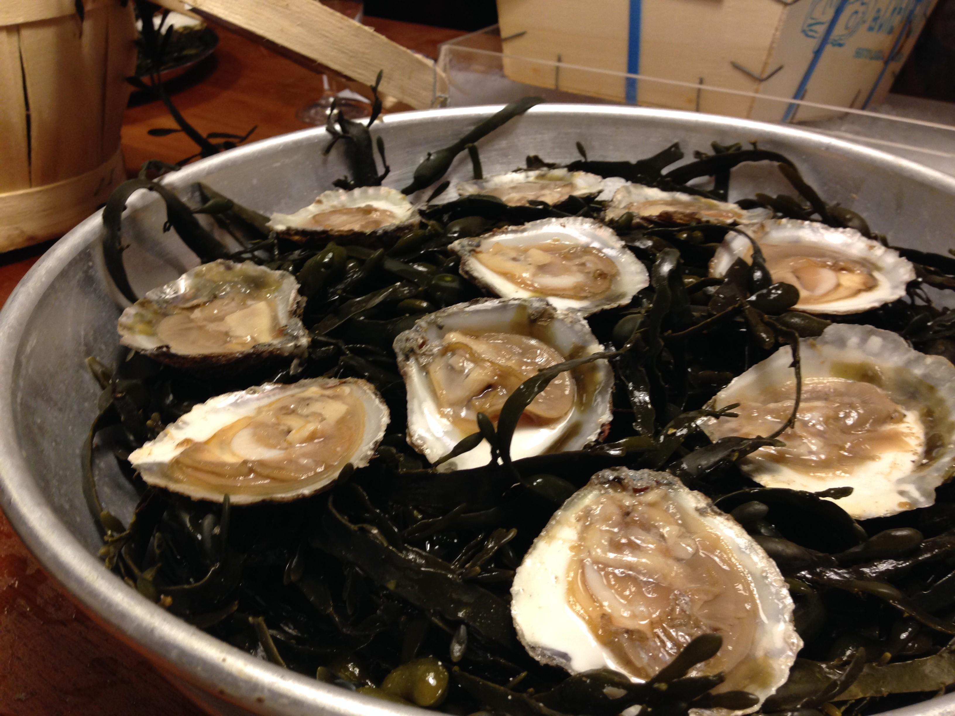 Rolls_royce onder de oesters