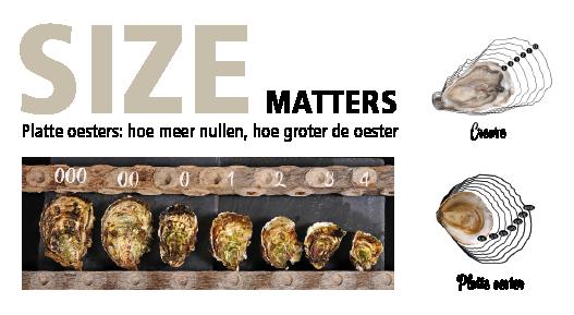 Formaten van oesters