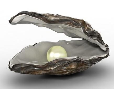 Een oester met een parel
