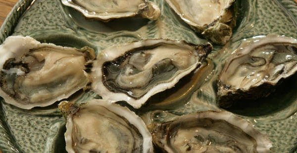 oestercompagnie-oesters-to-go-zeeuwse-bodem-cultuur-oesters